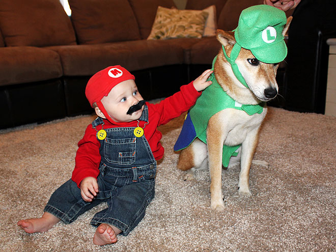 smb baby mario luigi dog.jpg  sc 1 st  Mario Mayhem & Super Mario Bros Animal costumes - Animals wearing gamer gear!