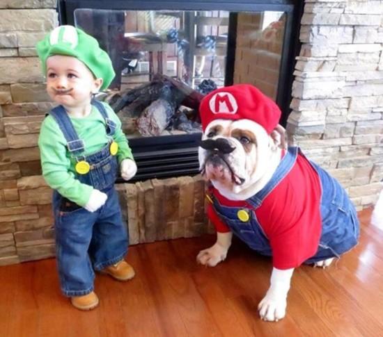 smb toddler luigi bulldog mario.jpg